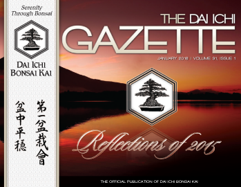 DIBK Gazette | January 2016 | Volume 31, Issue 1