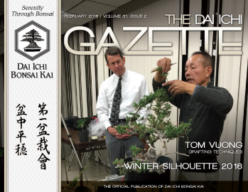 DIBK Gazette | February 2016 | Volume 31, Issue 2