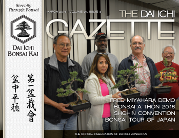 DIBK Gazette | March 2016 | Volume 31, Issue 3