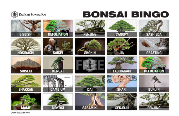 NOVEMBER HOLIDAY PARTY/BONSAI BINGO!