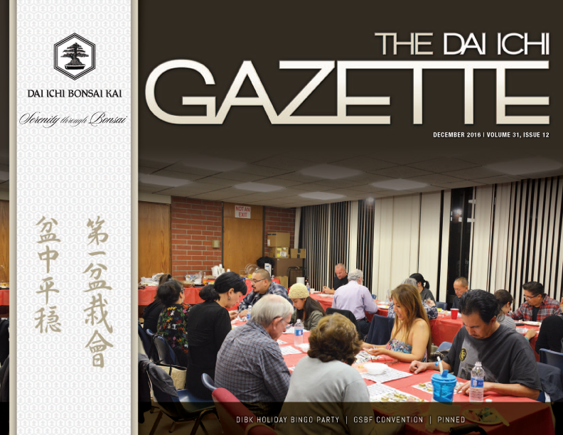 DIBK Gazette | December 2016 | Volume 31, Issue 12