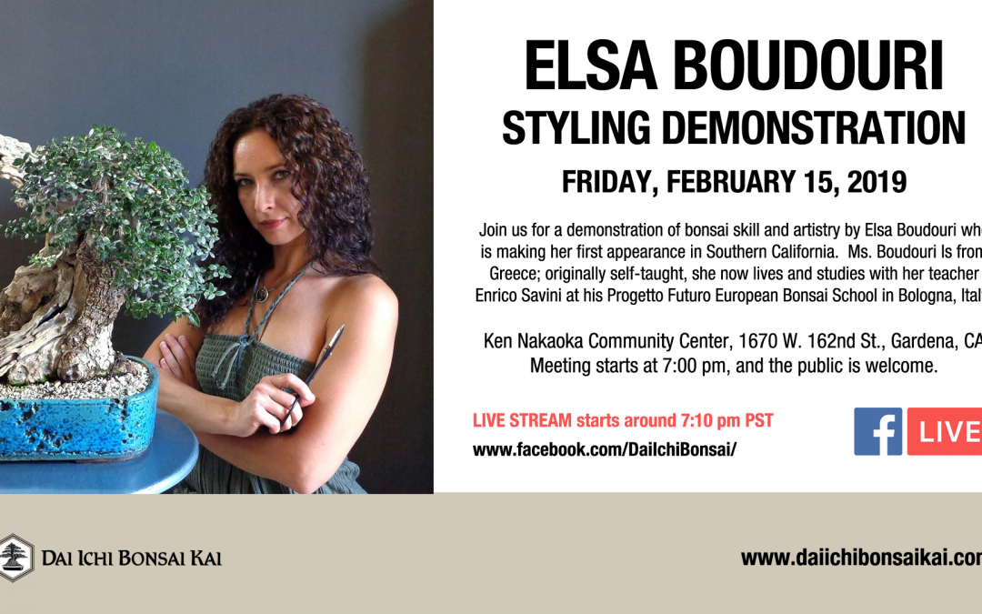FEBRUARY 15th 2019 MEETING  |  ELSA BOUDOURI – STYLING DEMONSTRATION
