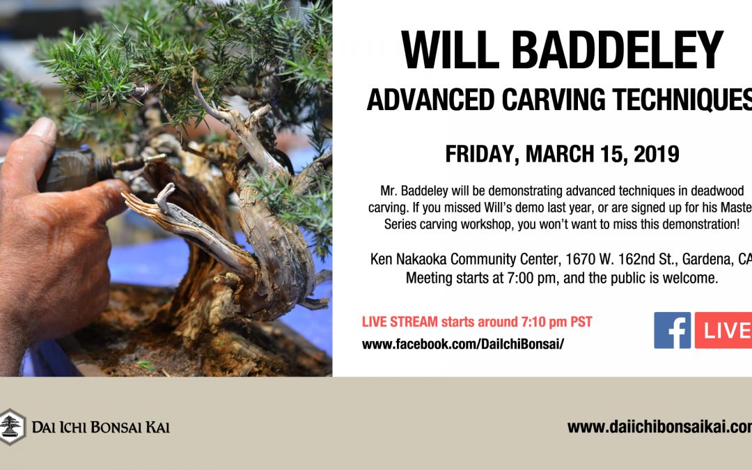 MARCH 15th 2019 MEETING | WILL BADDELEY – ADVANCED DEADWOOD CARVING DEMONSTRATION