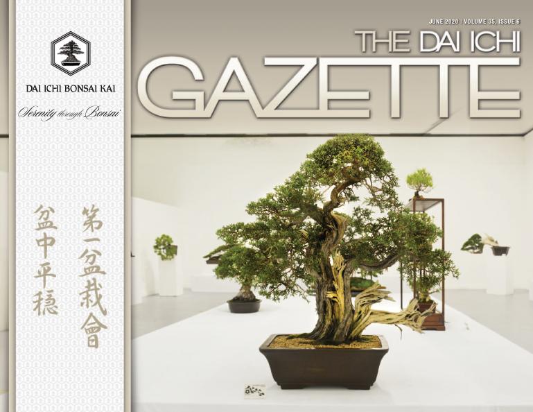 DIBK Gazette | June 2020 | Volume 35, Issue 06