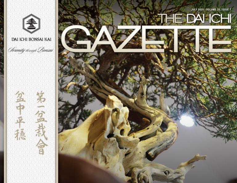 DIBK Gazette | July 2020 | Volume 35, Issue 07