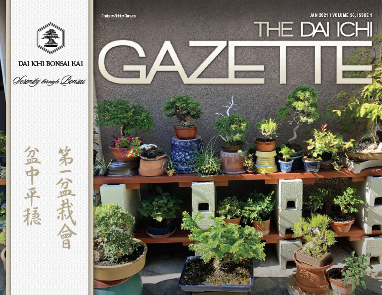 DIBK Gazette | January 2021 | Volume 36, Issue 01