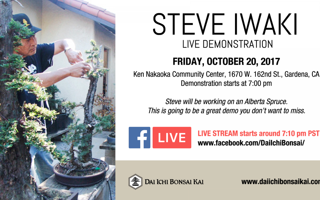 OCTOBER 20th MEETING – STEVE IWAKI