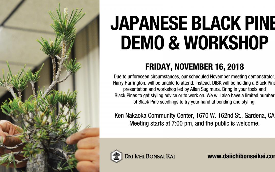 NOVEMBER 16th 2018 MEETING –  JAPANESE BLACK PINE DEMO & WORKSHOP