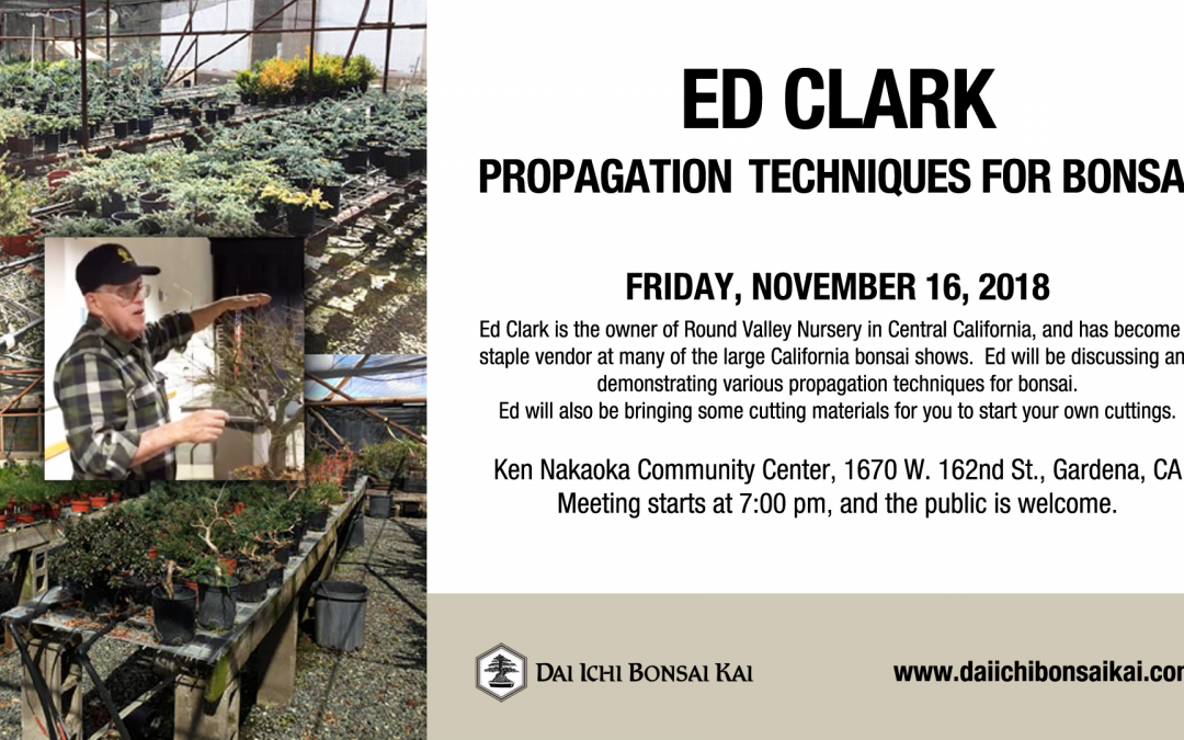 JANUARY 18th 2019 MEETING  |  ED CLARK – PROPAGATION TECHNIQUES FOR BONSAI